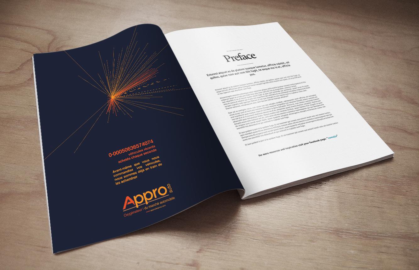 Campagne presse APPRO AUTO réalisée par l'agence de marque ELEM NT