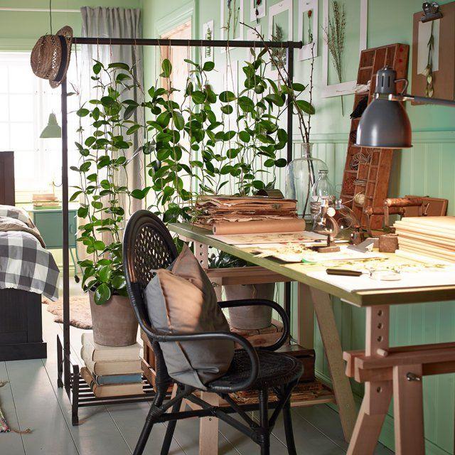 8a86cb09b81c0e52fc080d55add614ab--room-interior-houseplants